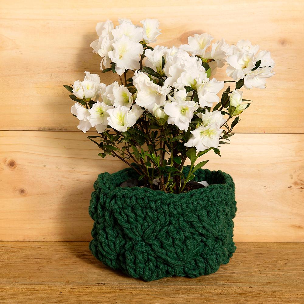 Vaso de planta em crochê