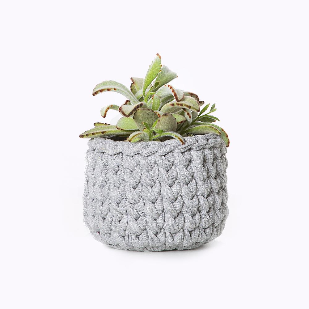 Vaso de planta cinza