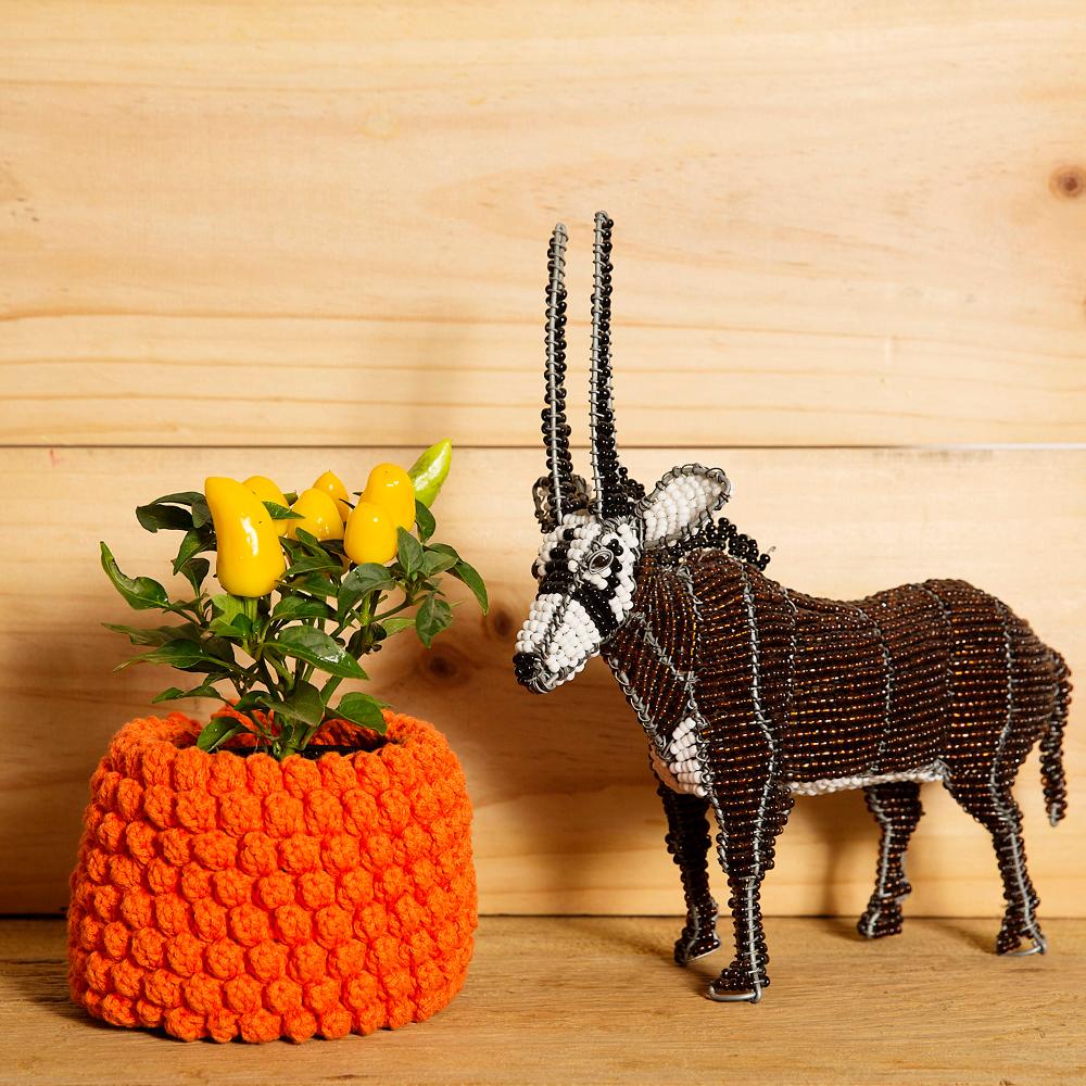 design em croche cesta